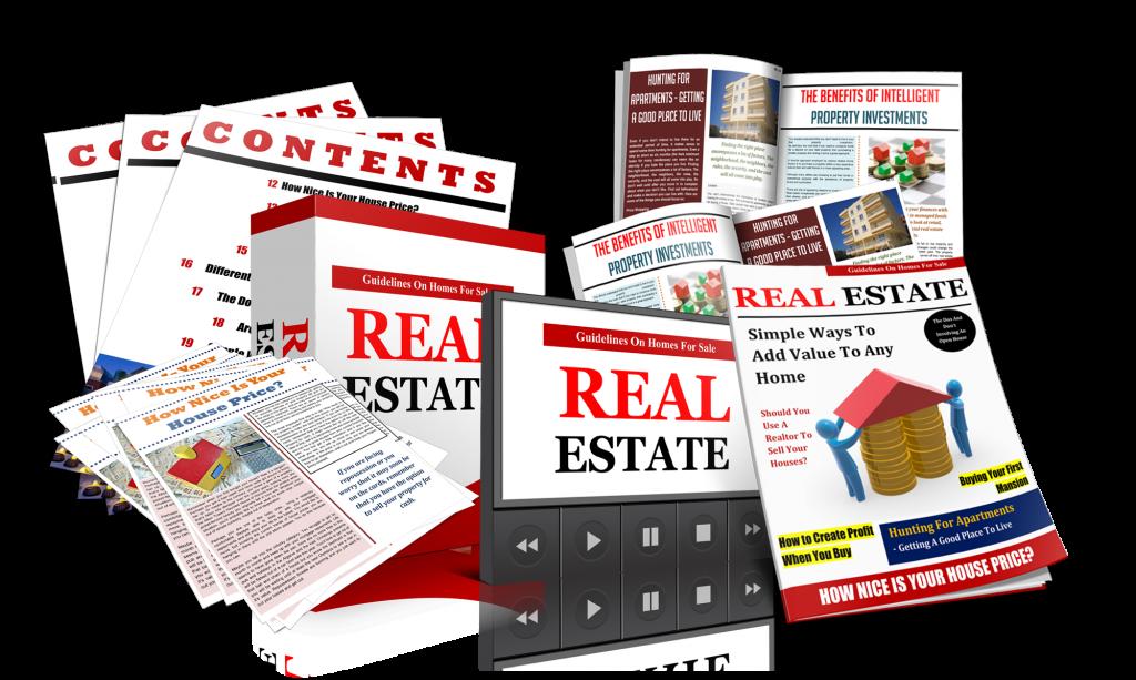 RealEstate_3d copy